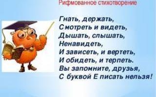 Особенности написания слов-исключений 1 и 2 спряжения в русском языке: применение правил