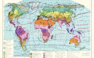 Карта природных зон мира: природные зоны евразии (таблица), особенности живой природы