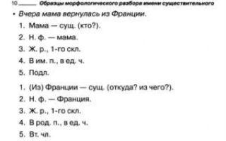 Что такое морфологический разбор слова с образцами на конкретных примерах