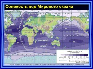 Соленость океанических вод: влияние расположения и других факторов, показатели Мирового океана
