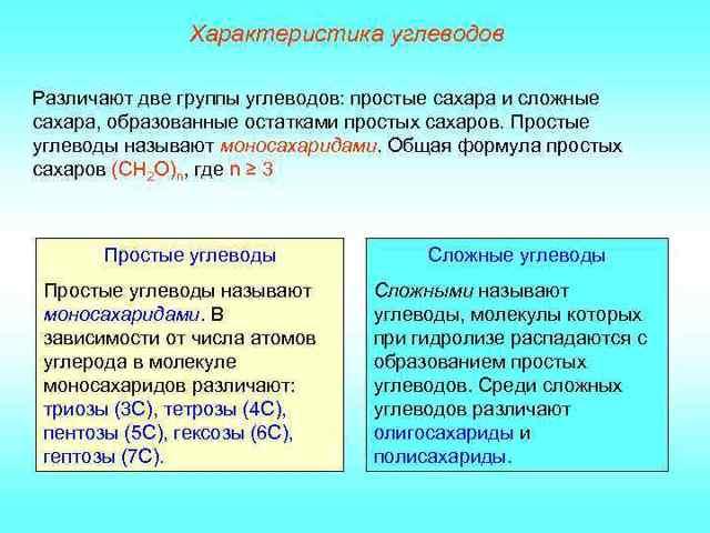 Функции липидов в клетке живого организма: синтез углеводов, строение и свойства