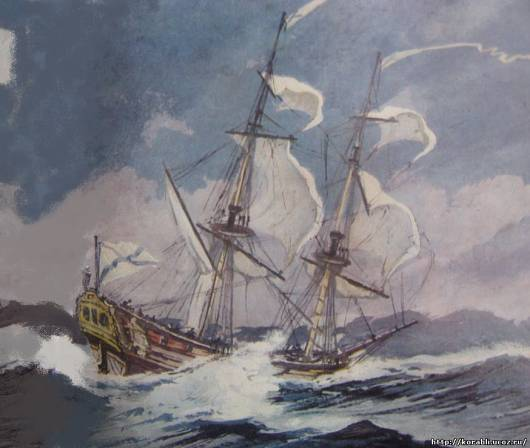 Витус Беринг: что он открыл во время экспедиций к берегам Северной Америки