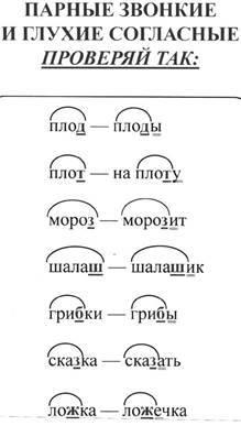 Парный согласный в корне слова: правописание и примеры написания