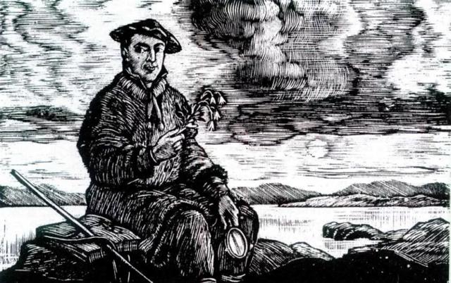 Карл Линней: краткая биография и научная деятельность, вклад в биологию и научные публикации
