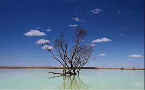 Австралия: реки и другие водные объекты, основные течения, проблемы экологии