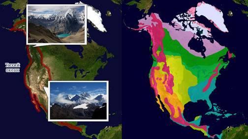 Природные зоны Америки: географическое положение и животный мир и растительность