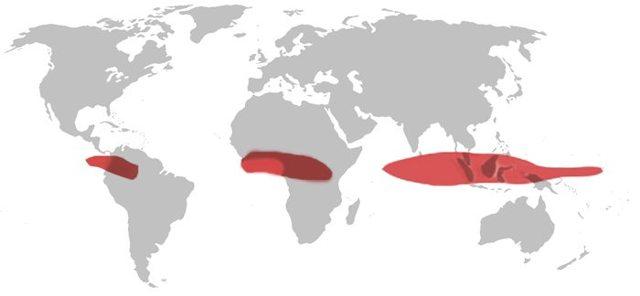 Климатические пояса Земли и таблица их влажности в них