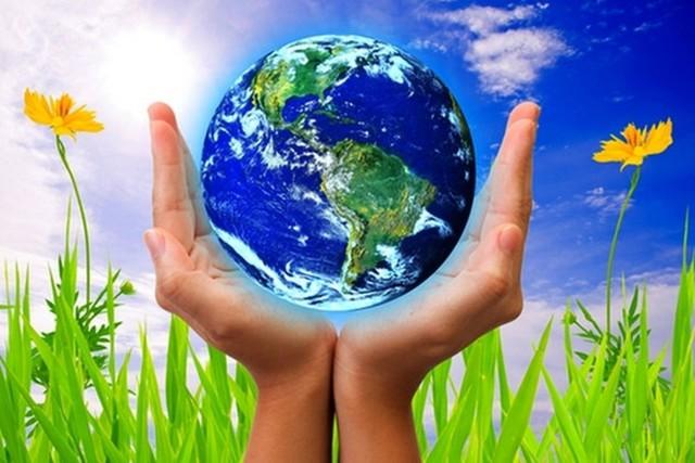 Как беречь природу: почему важно сохранять виды и правила поведения
