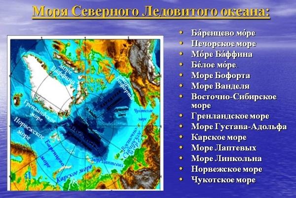 Моря, омывающие Северный Ледовитый океан: характеристика, особенности климата