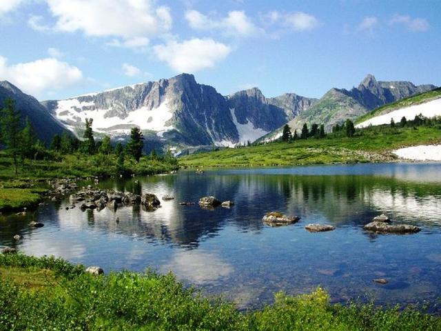 Россия: животный мир, природные зоны, список видов, занесенных в Красную книгу