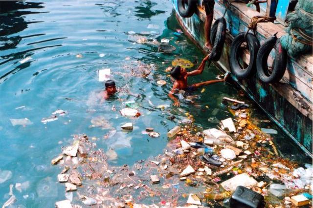 Загрязнение Мирового океана: что является основным загрязнителем морей и океанов