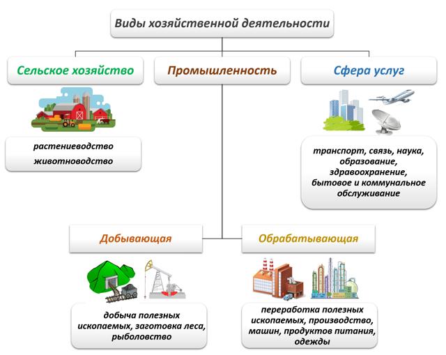 Основные виды хозяйственной деятельности человека: предприятия и показатели
