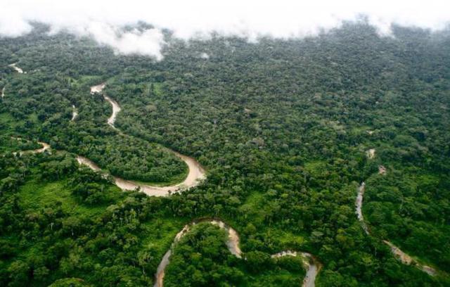 Амазонская низменность на карте: географическое положение и речная система низменной равнины
