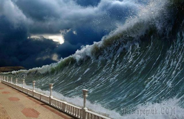 Список природных явлений: бедствия и катаклизмы, примеры из неживой и живой природы