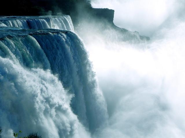 Живая и неживая природа, каковы особенности и чем отличаются объекты живой природы от неживой