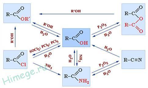 Химические свойства карбоновых кислот, формула одноосновной предельной кислоты, реакции получения