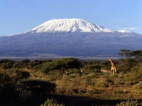 Горы в Африке и их координаты: Килиманджаро, Капские, список самых высоких точек