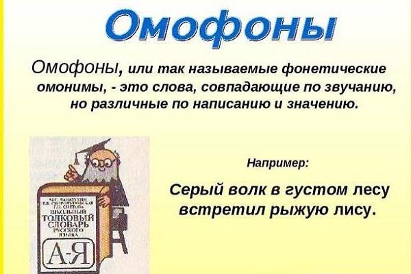 Омофоны в русском языке: значение и примеры употребления в предложениях