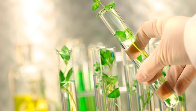 Список профессий, которые связаны с биологией: агроном, ветеринар и прочие