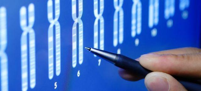 Что такое генетика: определение, альтернативные признаки и типы наследования