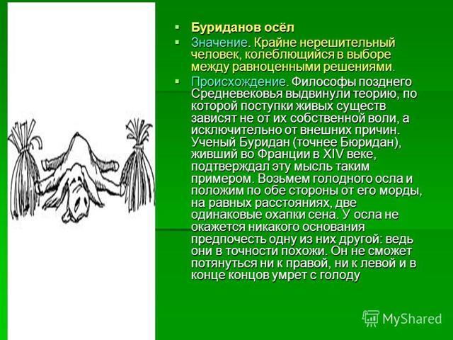 Буриданов осёл значение фразеологизма: происхождение притчи и проблема выбора между двух благ