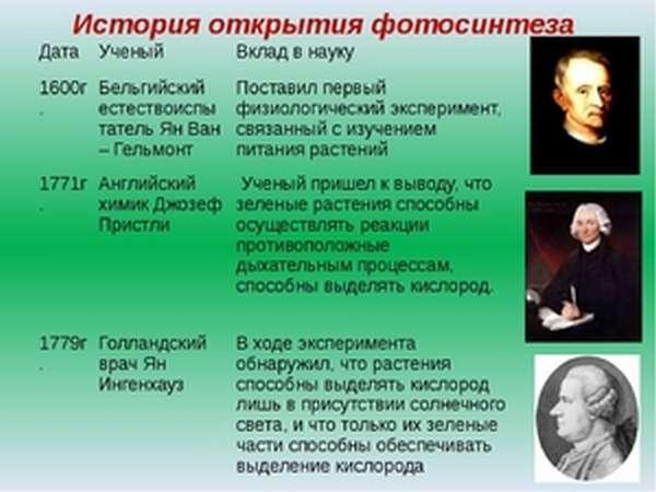 Определение фотосинтеза: история открытия, основные задачи, интересные факты