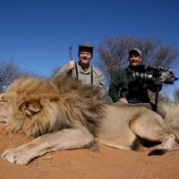Дикая природа Африки: хищники, жизнь племен на континенте и охота на диких животных