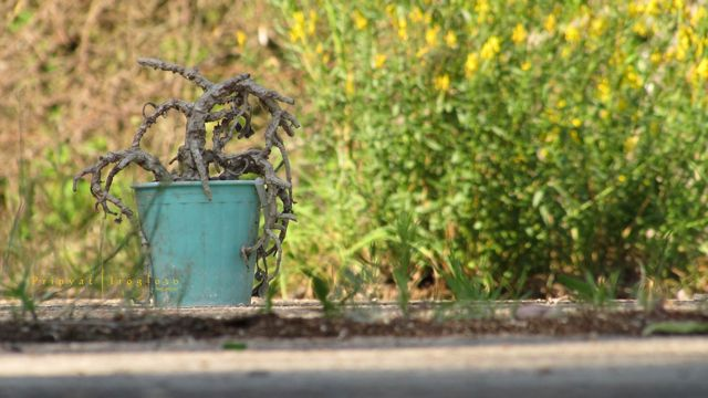 Влияние человека на природу: негативное воздействие на окружающую среду