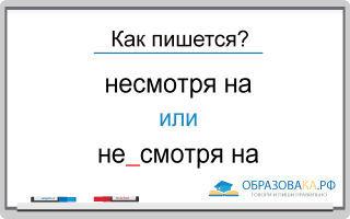 Слитное или раздельное написание оборотов «несмотря на» и «не смотря на» с примерами