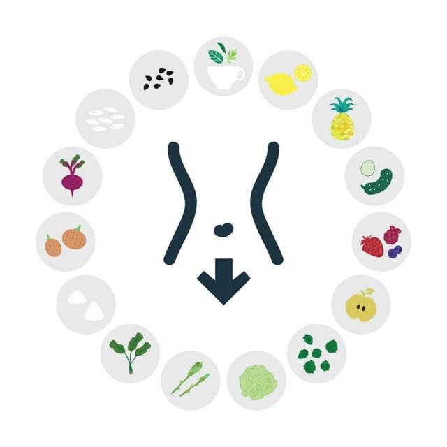 Метаболизм веществ: его виды, основные этапы, общая схема протекания, нарушения